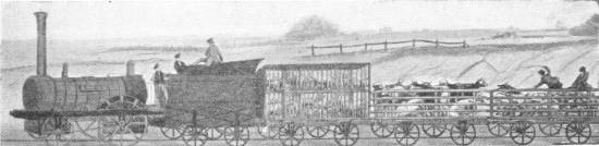 EARLY ROLLING STOCK ON THE LIVERPOOL AND MANCHESTER RAILWAY IN