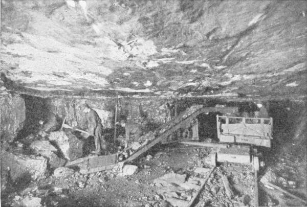 SCIENCE IN THE COAL MINE