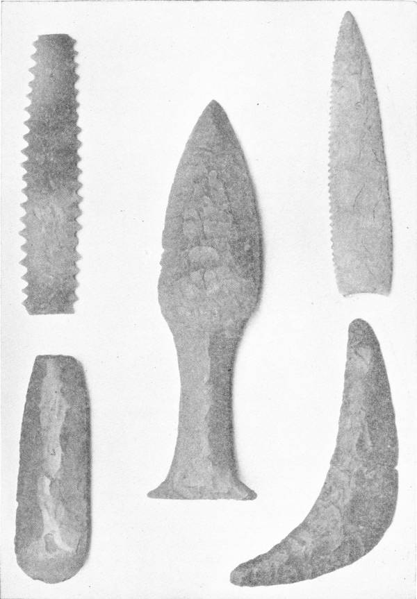 NEOLITHIC FLINT IMPLEMENTS